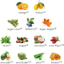 20種類のボタニカル成分でお肌を整えます。